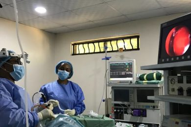 Endoscopic ENT Surgery